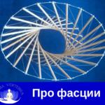 фасции. миофасциальний релиз, массаж, мануальная терапия, лечение спины